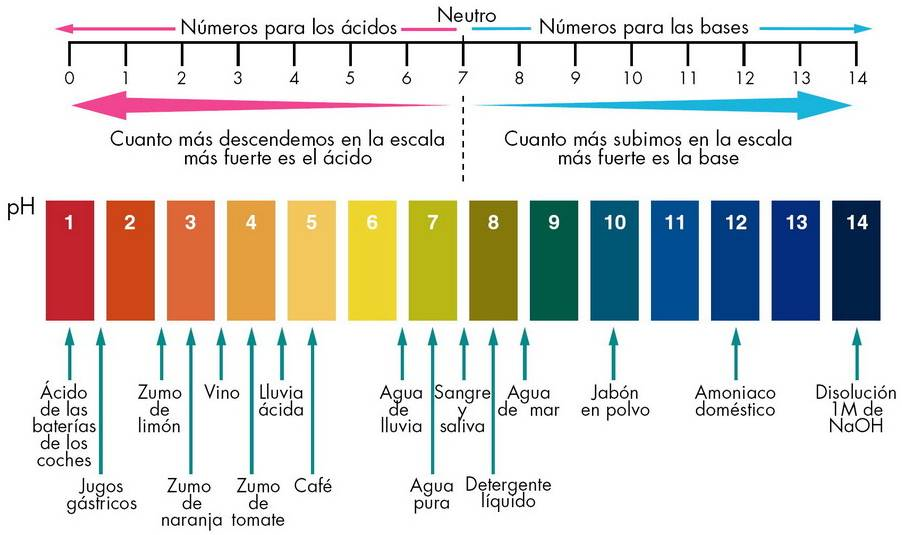 Grafico valores pH